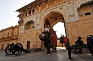 Amber Fort Elephant Images