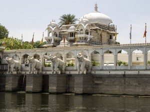Jag Mandir Carved Statues of Elephants Pictures