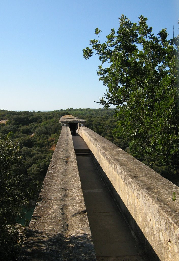 Pont du Gard Historical Facts and Pictures | The History Hub Pont Du Gard Top